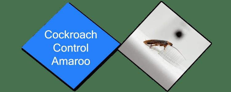 Cockroach Control Amaroo
